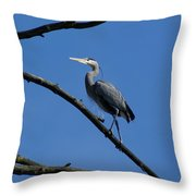 Walking The High Branch Throw Pillow