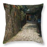 Walking The Streets Of Santa Lucia - 2 Throw Pillow