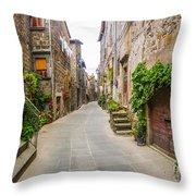 Walking Through Old Europe Throw Pillow