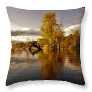 Wall Approved Throw Pillow