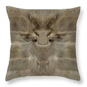 Wall Of Illusion Throw Pillow