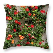 Wall Of Roses Throw Pillow