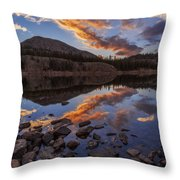 Wall Reflection Throw Pillow