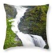 Wallace Falls Throw Pillow