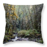 Wallace River Throw Pillow
