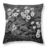 Wallflower Ain't So Bad Bw Throw Pillow