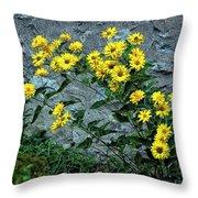 Wallflower Ain't So Bad Throw Pillow