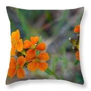 Wallflower Wildflower Throw Pillow