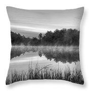 Wallis Sands Marsh Smoke On The Water Rye Nh Black And White Throw Pillow