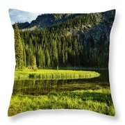 Wallowas - No. 8 Throw Pillow