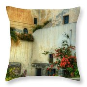 Walls And Windows Throw Pillow