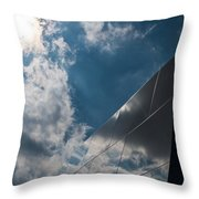 Walls Of Reflection Throw Pillow