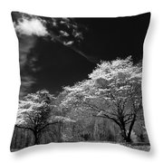 Walnut Creek Dogwoods Throw Pillow