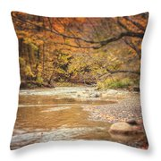 Walnut Creek In Autumn Throw Pillow