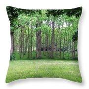 Walnut Grove Throw Pillow
