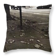 Walnut Street Throw Pillow