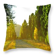 Wanaka Morning Light Throw Pillow