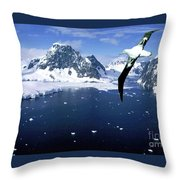 Wandering Albatross Over The Le Maire Channel Throw Pillow