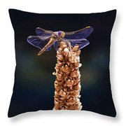 Wandering Glider Dragonfly Throw Pillow