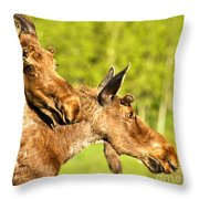 Wandering In The Forest Throw Pillow