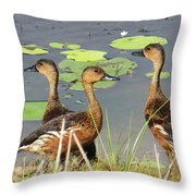 Wandering Whistling Ducks Throw Pillow