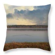 Wando River Landscape Throw Pillow