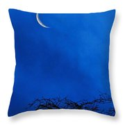 Waning Crescent Throw Pillow