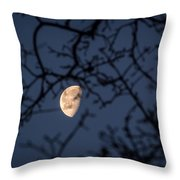 Waning Throw Pillow