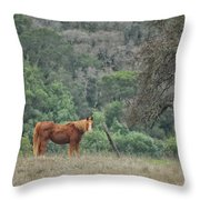Wanna Ride Little Lady Throw Pillow