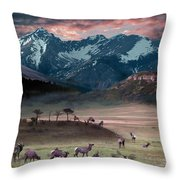 Wapiti Heaven Throw Pillow