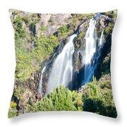 Waratah Falls Tasmania Throw Pillow