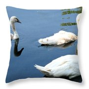 Ward Throw Pillow