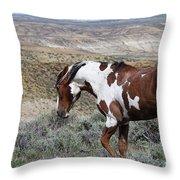Warhorse Throw Pillow