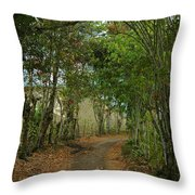 Wariman Pathway Throw Pillow
