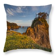 Warm And Peaceful Coast Throw Pillow