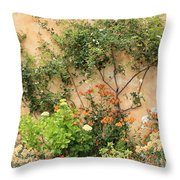 Warm Colors In Mission Garden Throw Pillow