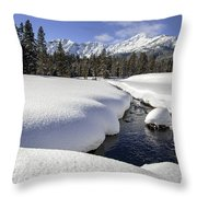Warm Creek Throw Pillow