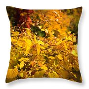 Warm Fall Colors Throw Pillow