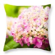 Warm Light Throw Pillow
