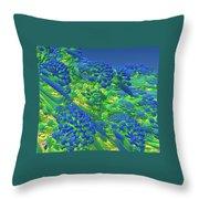 Warm Sea Throw Pillow