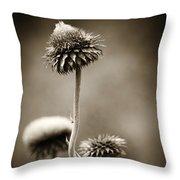 Warm Thistle Throw Pillow