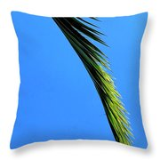 Warmer Days To Come Throw Pillow