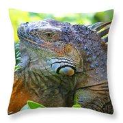 Warming Myself Throw Pillow