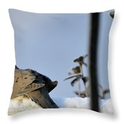 Warming On The Snow Throw Pillow
