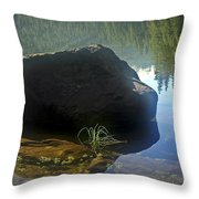 Warming Sun Throw Pillow