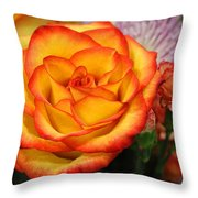Warmth On A Winter's Day Throw Pillow
