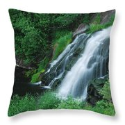 Warner Falls Throw Pillow by Michael Peychich
