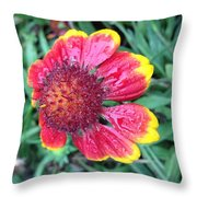 Warning Dew Throw Pillow