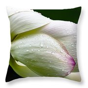 Warts And All Throw Pillow