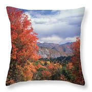 212m45-wasatch Mountains In Autumn  Throw Pillow